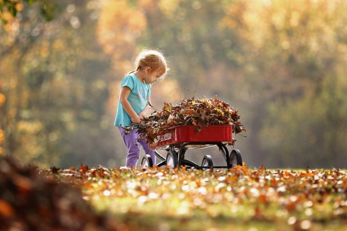 girl with wagon and leaves
