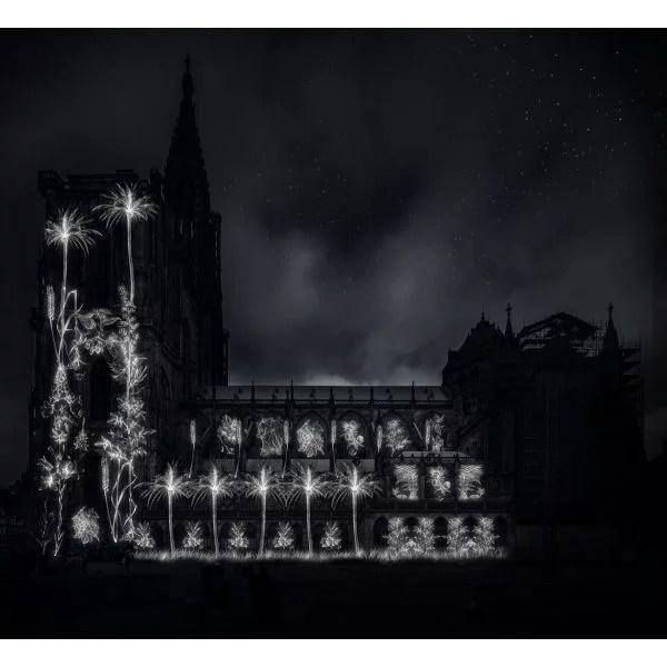 Illuminations de la cathédrale de Strasbourg 2019
