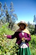 Antolina in her Garden in Vicos