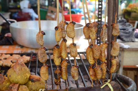 Amazonian snack