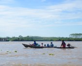 Up the Amazone river