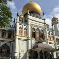 シンガポール国立蘭園からアラブストリート・サルタンモスクを観光! ~ 初めて見るものばかりで大興奮!! [シンガポール旅行記 その2]【旅情報・シンガポール】