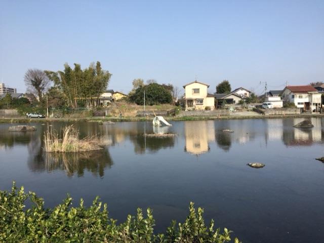 上江津湖湧水郡