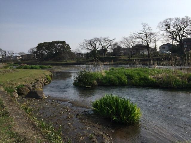 上江津湖周辺