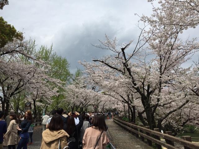 熊本城 行幸坂