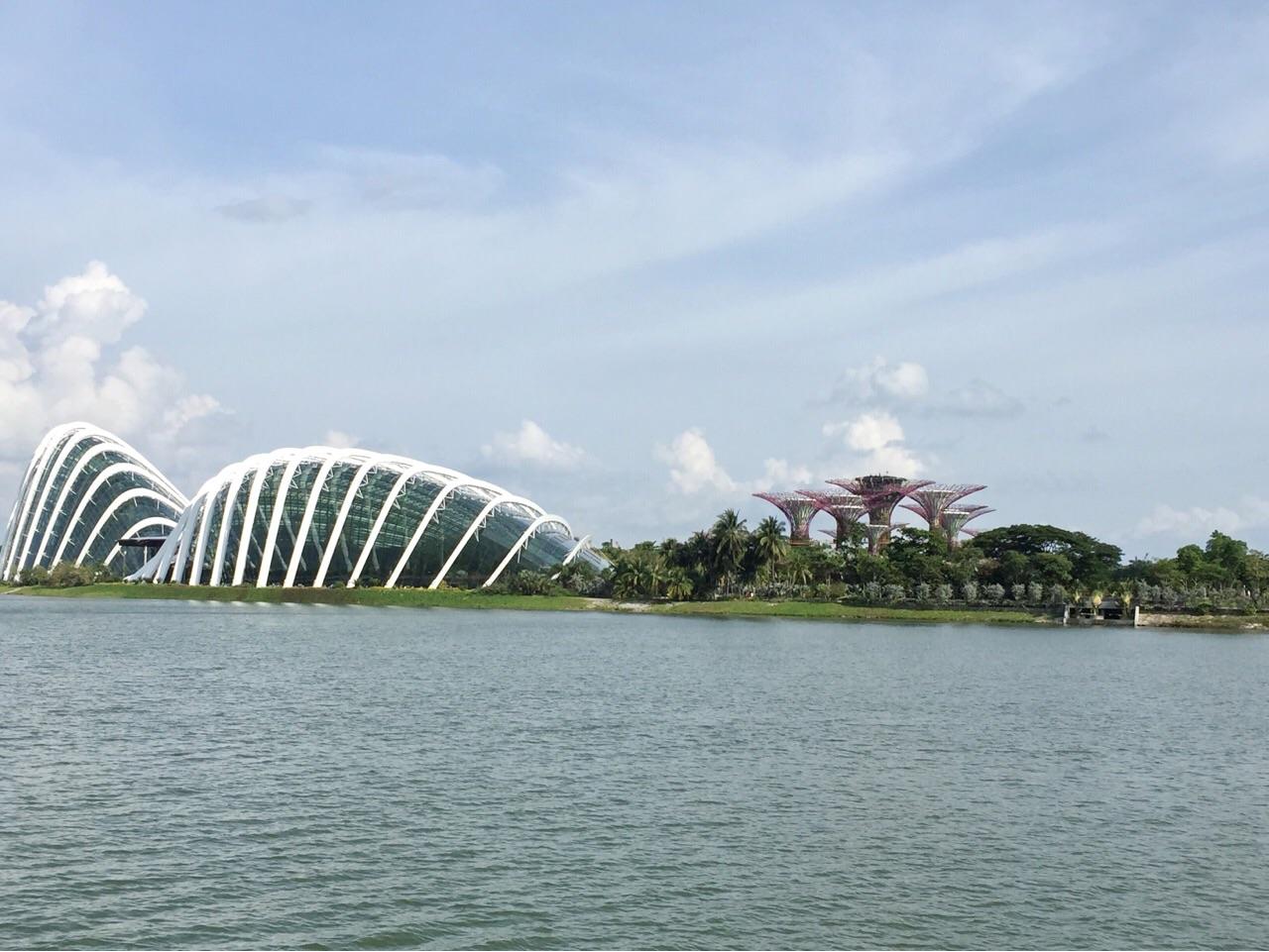 シンガポール スーパーツリー