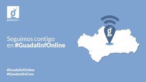 guadalinfo_online
