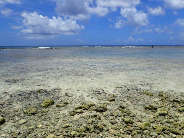 ガンビーチの砂