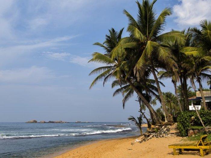 ニゴンボ(スリランカ)