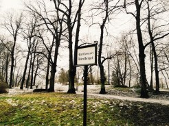 7. The Vartiovuori Hill, a landscape park.