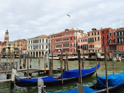 3. The Canale Grande (Grand Canal), the major water-traffic canal of the city. Along this stretch of water there are shops and dining establishments – which are usually overpriced – with the main districts of San Marco and San Polo on either side.