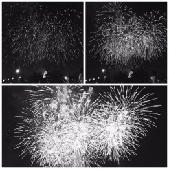 8. For a full hour, up close to where the pyrotechnics were launched, the synchronised fireworks – of various colours and patterns, with accompanying music and filling the sky – drew applause from the crowd after each segment. The three-minute finale was a special treat.