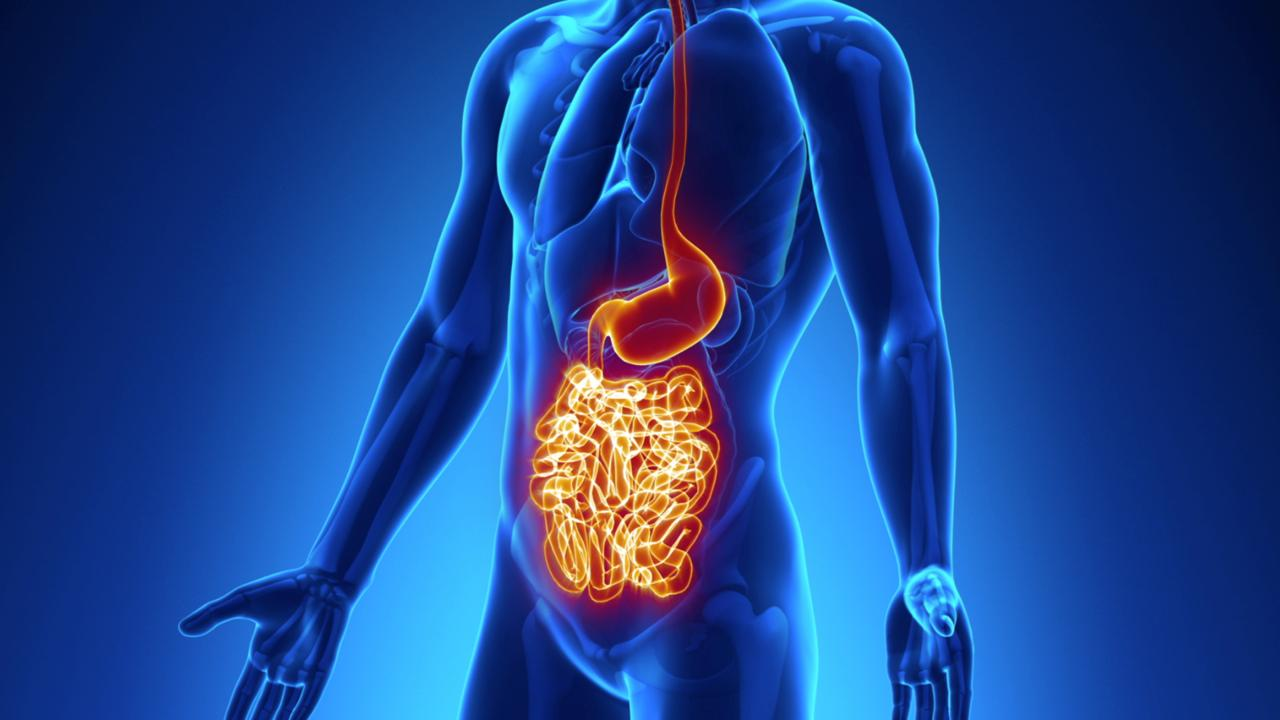 Disease Crohn Bowel And Colitis Irritable Ulcerative