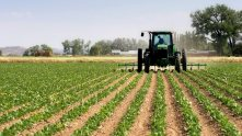 Image result for Experts urge Nigerian politicians to invest in farming