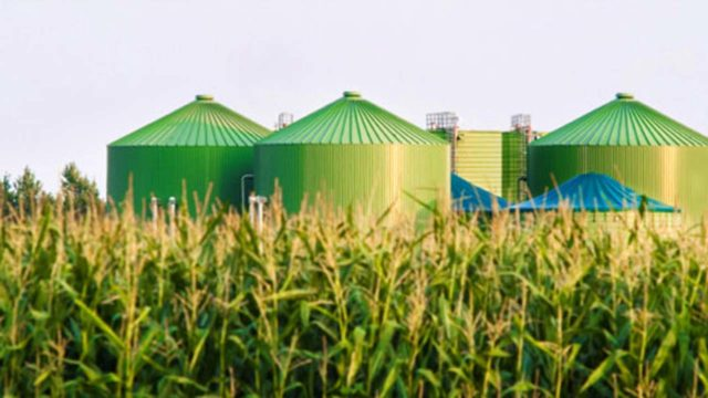 Biomass as a source of energy  The Guardian Nigeria News  Nigeria and World NewsOpinion  The