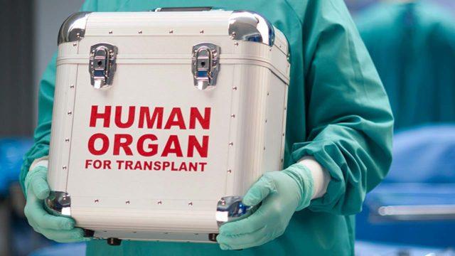 NAPTIP partners NMA police to curb human organ harvesting
