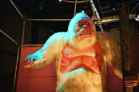 Yetis Not Rejected by Science