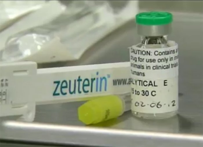 Single-Injection Dog Sterilization Zeuterin Available Starting Monday