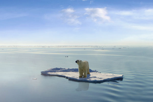 Climate Change Confusion Over Extreme Weather
