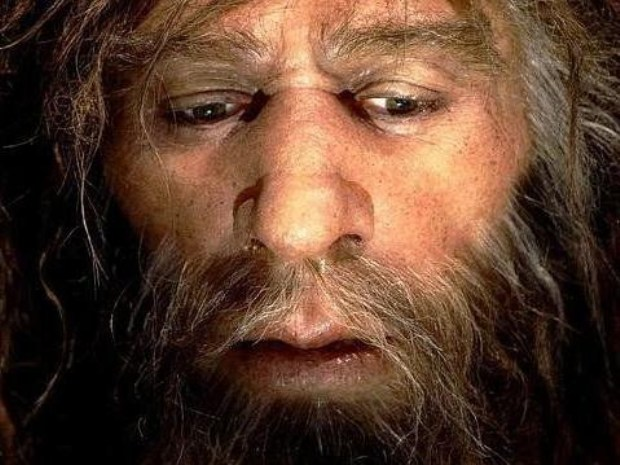 Neanderthal Genes are Present in the Homo Sapien Genome?
