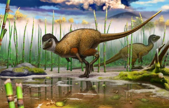 Scientists Believe Possibly Almost All Dinosaurs Were Covered in Feathers