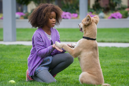 'Annie' Jamie Foxx and Cameron Diaz Odd Choices in Remake (Review/Trailer)