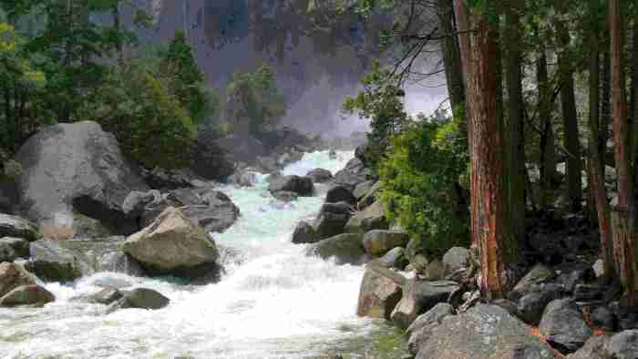 Negative Ions Going Beyond Alkalinity