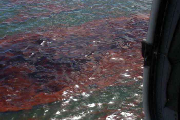Oil Spill in California Closes Beaches and Events