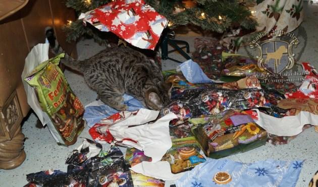 ChristmasMorning_2014_73