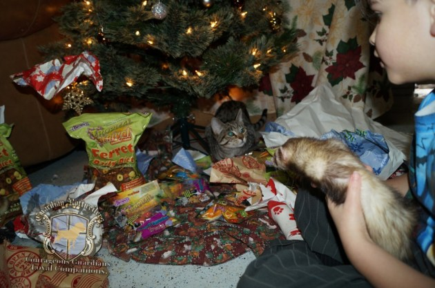 ChristmasMorning_2014_93