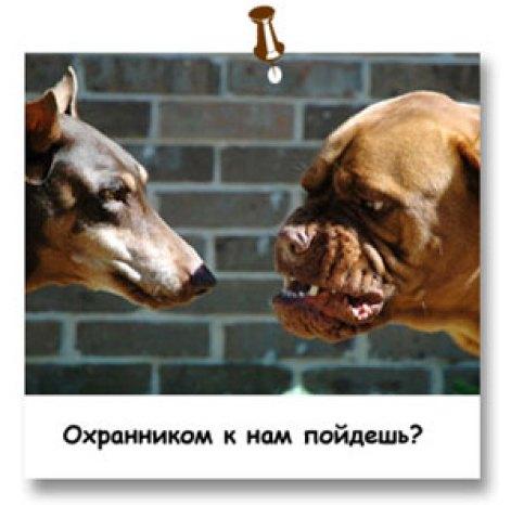 humor_14_07_17_07