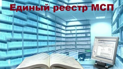 edinii_reestr_msp