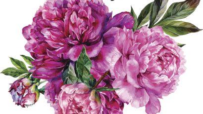 pink-peonies-painting