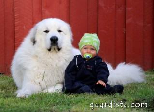 guardistaIMG_2496