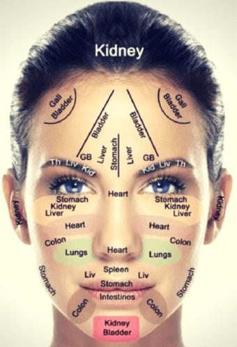 gua sha face reflexology map