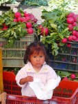 little girl, her nappy and huge radish