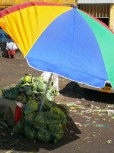 sustainable umbrella stand