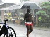 rainy Livingston