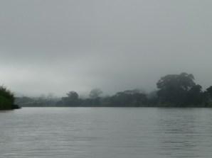 foggy morning on the river San Juan