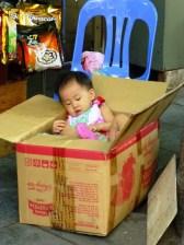paper cot