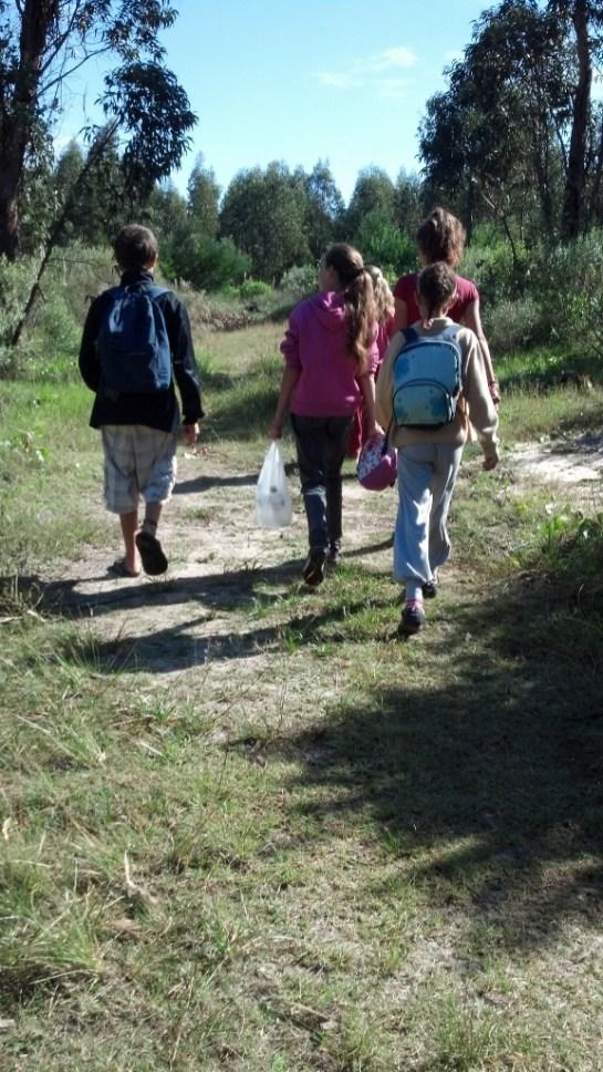 Iniciando la caminata por el bosque