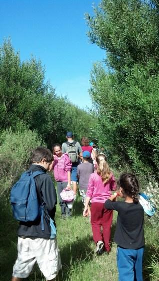 Grupo en plena caminata