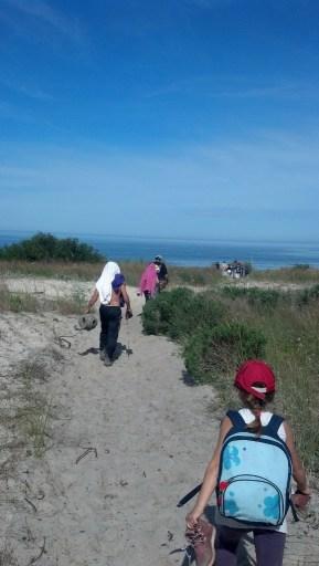 Camino de regreso por la playa