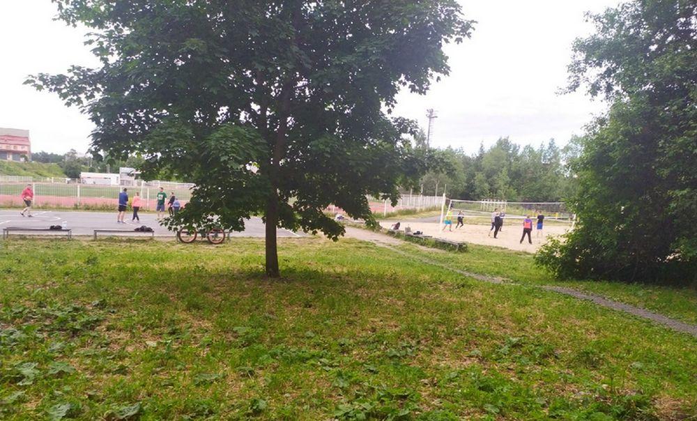 парк Ямка Петрозаводск волейбол
