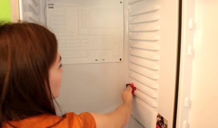 холодильник, девушка, моет
