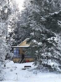 Заснеженный дом с лесу