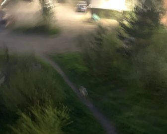 Фото: Подслушано в Медвежьегорске