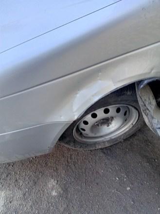 Стая диких псов в Петрозаводске изуродовала машину
