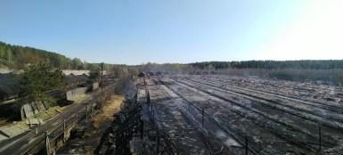 Пожар уничтожил звероферму в Карелии