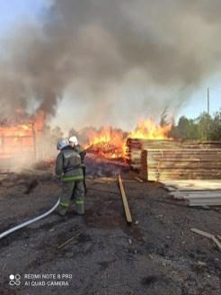 пожар на пилораме в карелии
